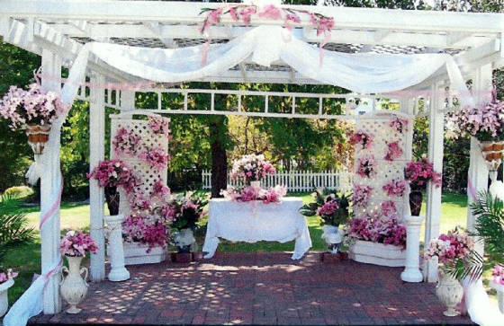 Pergola for weddings home improvement resource wedding pergola junglespirit Image collections