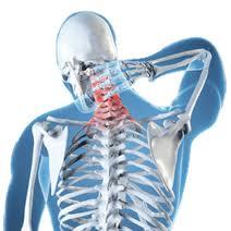 chiropractor expert witness
